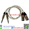 สายสัญญาณเสียง1เมตร XLR Male*2 To PLUG MIC ST*2 PROFESSIONAL AUDIO CABLE PA SYSTEM