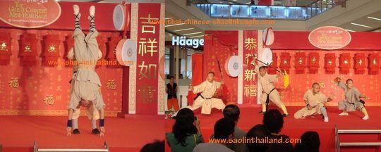 การแสดงกังฟูวัดเส้าหลิน ตรุษจีน 2553 เซ็นทรัล แจ้งวัฒนะ ชลบุรี 2/ Shaolin Kungfu performance on Chinese New Year 2010 at Central Plaza Jangwattana and Central Chonburi Thailand 2