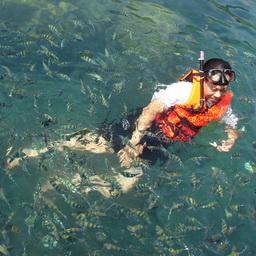 ฝูงปลาเป็นกับเองกับนักท่องเที่ยว