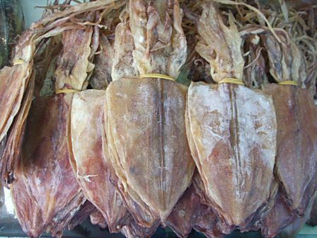 ปลาหมึกแห้ง แบบผ่า ขนาดต่างๆ