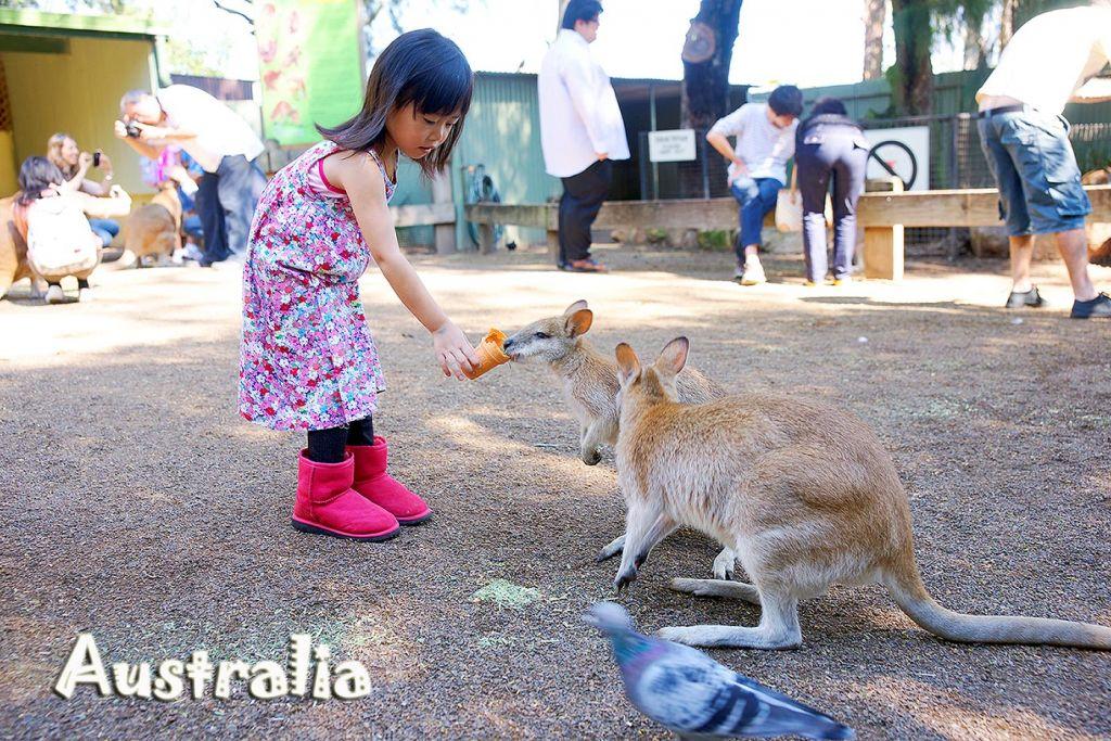 แนะนำท่องเที่ยวด้วยภาพ เดินทางด้วยตนเอง ออสเตรเลียทริป
