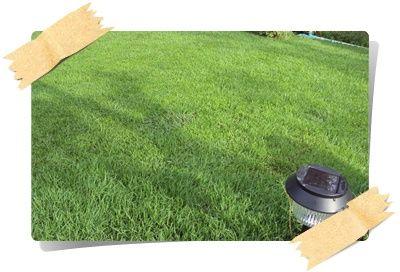 การเลือกซื้อเครื่องตัดหญ้าให้เหมาะกับการใช้งาน