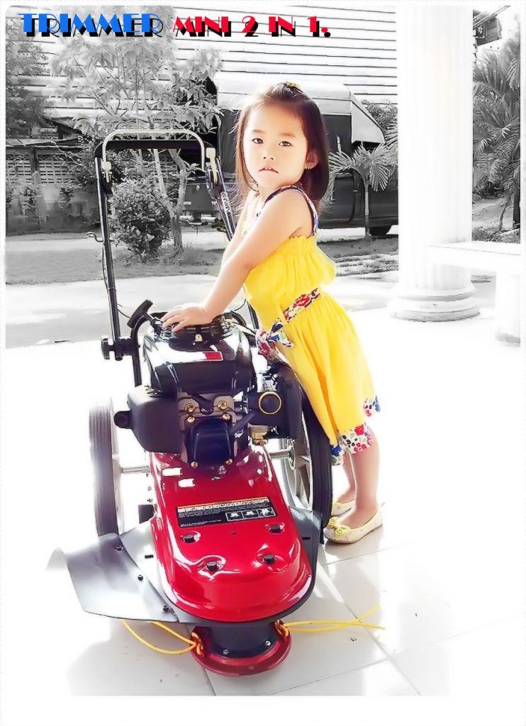 รถตัดหญ้า รุ่นมินิ 2 IN 1