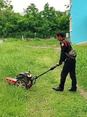 รถตัดหญ้า รุ่นมินิ 2 IN 1 ใช้สายเอ็นตัดหญ้า และใช้ใบมีดได้ ปลอดภัย