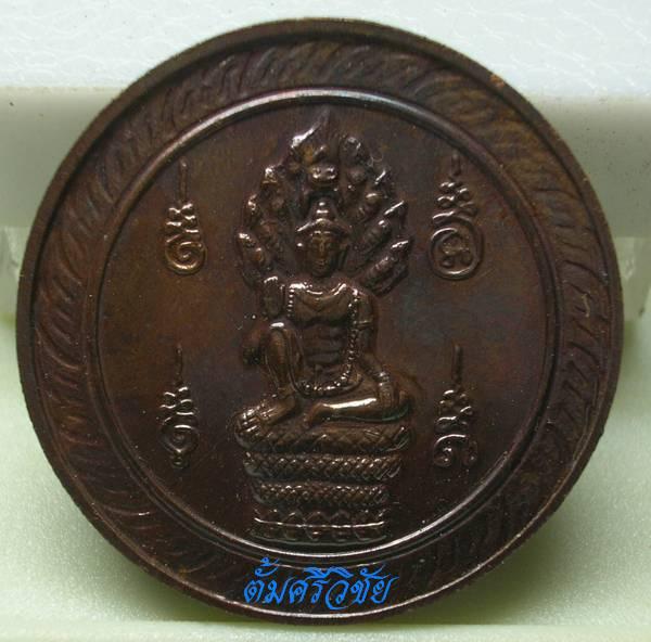 เหรียญนักษัตรประจำปีมะโรง สัญลักษณ์รูปพระเทวโพธิสัตว์พังพกาฬ แทนรูปงูใหญ่