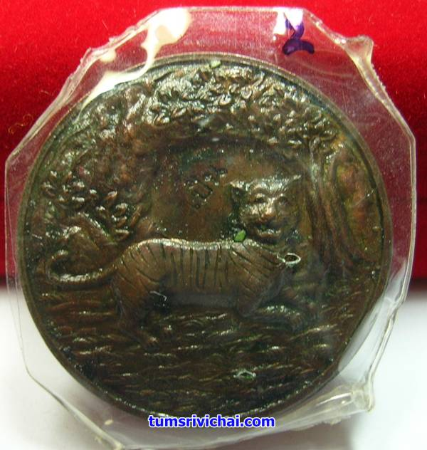 เหรียญพญาเสือนอนกิน เนื้อทองแดง แช่น้ำมันเสือ(2) อาจารย์ประสูติ วัดในเตา
