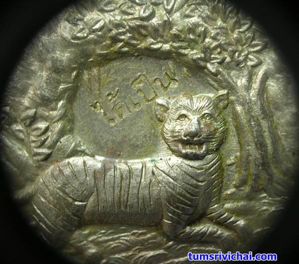 ภาพชัดๆ เหรียญพญาเสือนอนกิน เนื้อนวะ แช่น้ำมันเสือ(2) อาจารย์ประสูติ วัดในเตา