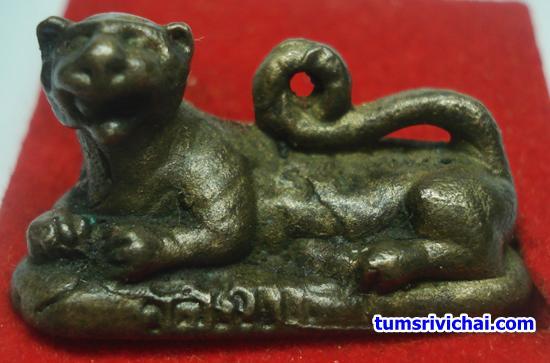 รูปหล่อพระยาเสือนอนกิน แช่น้ำมันเสือ อ.ประสูติ วัดในเตา