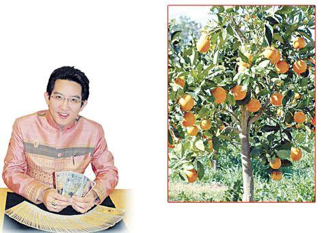 อาจารย์คฑา ชินบัญชร กับต้นไม้มงคลของคนแต่ละปีเกิด