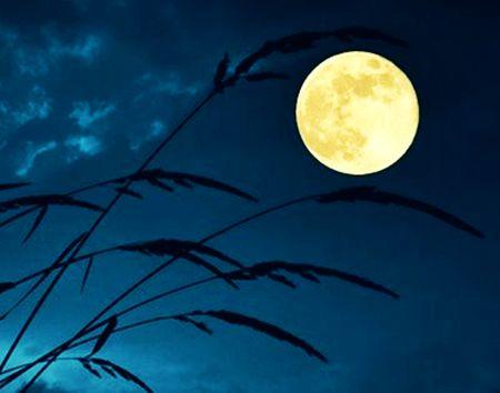 พระจันทร์กำลังมองพ่อ ความรู้สึกผิดชอบชั่วดี