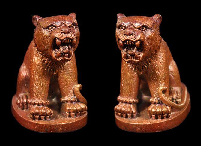 เสือหลวงพ่อโปร่ง วัดถ้ำพรุตะเคียน เนื้อทองแดง