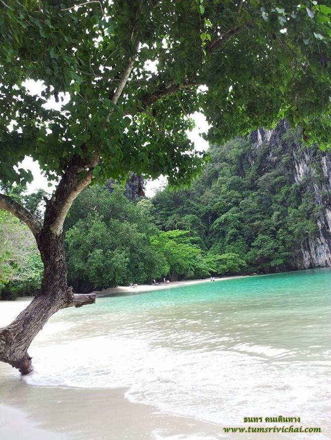 (KoH Hong) Than Bok Khorani Nation Park Krabi, Thailand