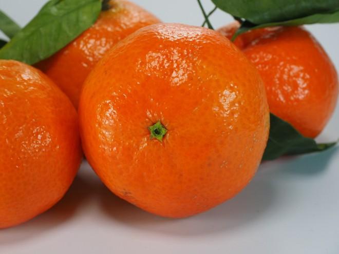 ส้ม ผลไม้มงคลส้มสีทอง นับว่าเป็นผลไม้ยอดนิยมอันดับ1