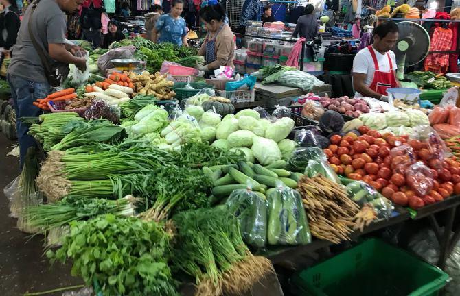 การทำเกษตรต้องปลูกได้ขายเป็น สำรวจตลาดเทศบาลสกลนคร