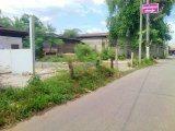 Property No. LSS-161